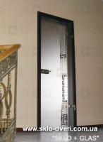 Стеклянные двери с алюминиевой коробкой