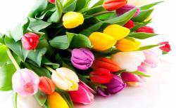 С праздником весны и красоты!