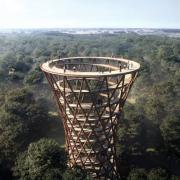 Оригинальный проект древесной тропы вокруг леса