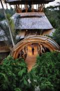Уникальный строительный материал из бамбука