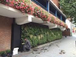 Уникальный вертикальный фасад-сад