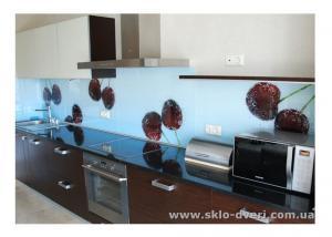 Стеклянные кухонные фартуки Skinali - Харьков